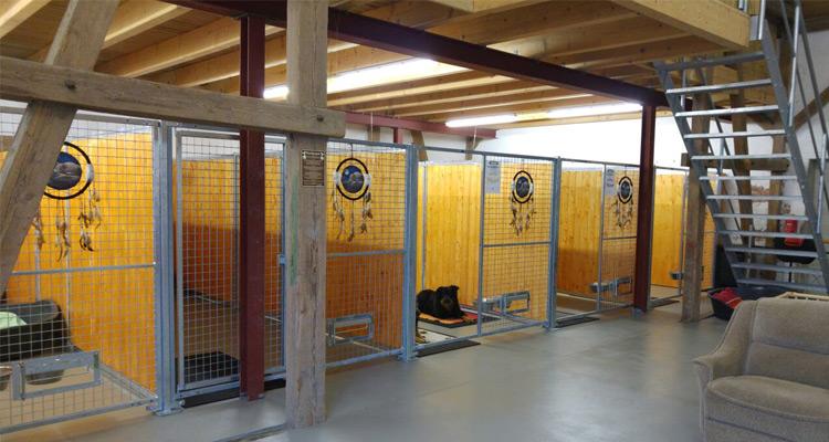 Innenbereich Hundepension